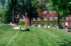 Bascom Mall (Ann Althouse) Tags: madison sunbathing bascommall