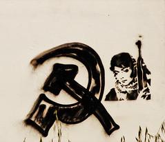 woman of the revolution stencil (_tonidelong) Tags: art bush stencil terrorist pop communist communism revolution revolutionary revolucion comunismo comunista terrorista revolucionaria