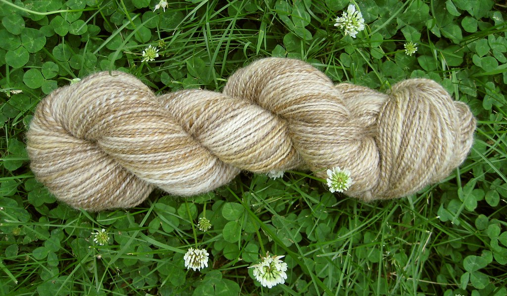 BFL Pussy Willows