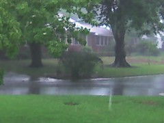 It's raining!!!