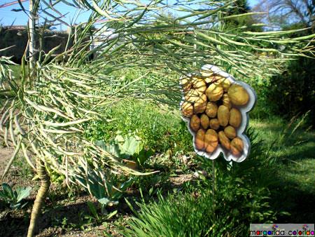 horta | vegetable garden
