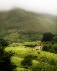 Caserio en el Jaizkibel (zubillaga61) Tags: fog landscape paisaje niebla caserio jaizkibel
