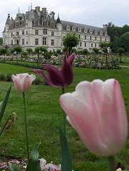 Château de Chenonceau (Joe Shlabotnik) Tags: flowers france castle tulips chateau chenonceau myfave 2007 faved april2007 heylookatthis