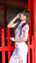 DSC_2120 (YC_Lai) Tags: nikon taiwan kaohsiung d200   confuciustemple nikkor50mmf14d