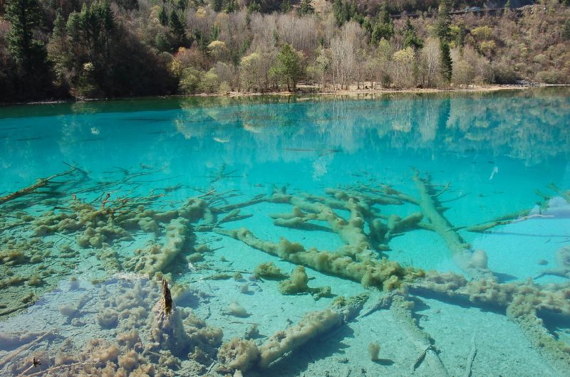 Five-flower Lake, Jiuzhaigou, Sichuan, China