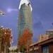 felicitacion 2007-2008