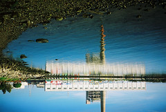 toxic beach (lomokev) Tags: sanfrancisco california sea reflection water graffiti factory upsidedown dirty contax flip agfa ultra t2 agfaultra contaxt2 cloudfactory toxicbeach deletetag top20reflections sanfrancisco2007 palliation file:name=070330contaxt218 warmwatercovepark rota:type=showall rota:type=composition rota:type=cityscape yahoo:yourpictures=reflections
