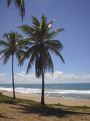 beach at of Costa do Sauipe