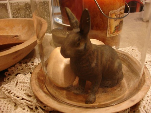 Bunny Display