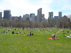 the sheep meadow at central park (adamperer) Tags: nyc spring centralpark sheepmeadow