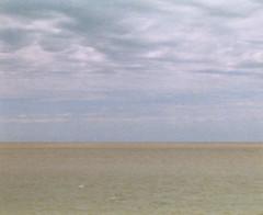 (drl.) Tags: uruguay riodelaplata 110film minolta110slrzoom purged butilovethis purge68 savedfrombeingpurgedsillyyoubygdiddy youknowwhyidontcommenthere ahstreuisboycottingmybeacheseventhepollutedrivers oryouareboycottingapersonwhydoyouhatemeso