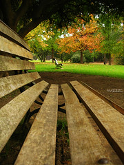 Take a rest.. (mazzze) Tags: park trees colors garden bench botanical arboles via banco jardin colores explore botanico tranquilidad helluva naturesfinest quilpue splendiferous supershot anawesomeshot diamondclassphotographer mazzzesfaves