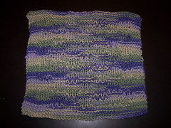 Dishcloth 1