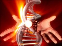 Human Gene