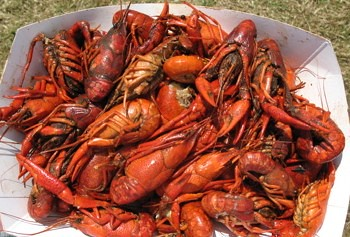 jazz-fest-food-crawfish