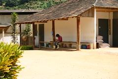 Coffee plant (Bjare) Tags: brazil rio geotagged brasilien semester resa resor riodejanerio