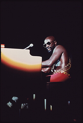 Foto: Isaac Hayes Performs in Chicago