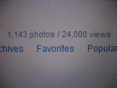 i've never been one to be popular... (_melika_) Tags: flickr views popular photostream flickrcom melika wwwflickrcom