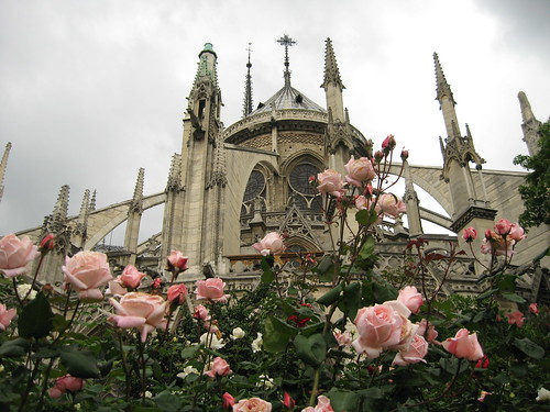 Romance is blooming in Paris