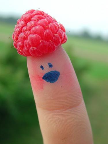 ms raspberry