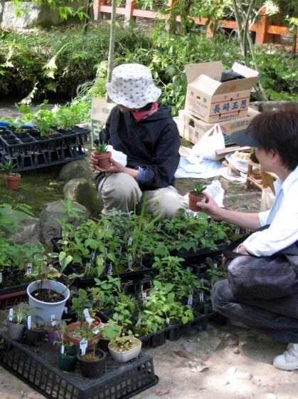 2007.5.27 上賀茂神社52 手作り市49
