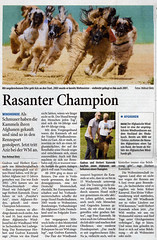 Westdeutsche Zeitung_Aziz_WEB