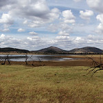Pilanesberg, close to Pretoria