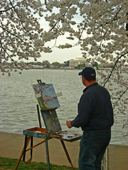 Painter (Tom O'Neill) Tags: monument cherry washington memorial paint artist blossom basin painter jefferson tidal easel diamondclassphotographer flickrdiamond