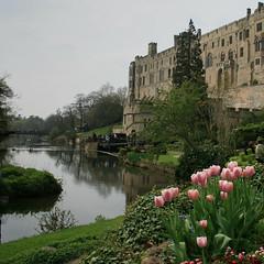 Warwick Castle taken from Mill Garden (LindaScannell) Tags: castle mill gardens river garden spring tulips warwick avon favoritegarden superhearts lindascannell twtmesh350725 bigpicture2008 rnbwarwickshireavon coventryandwarwickshire