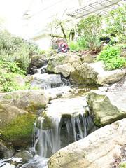 waterfall experiment 5 (shetha) Tags: waterfall andrew naturewalk laddsaddition