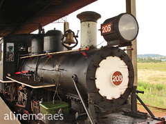 Locomotiva 205 por Aline Moraes