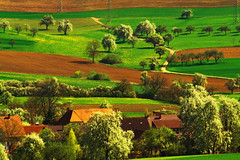 Spring Time (Matthias Hilf) Tags: trees nature rural germany landscape photography spring europe minolta bright wiesen sunny dynax7d colourful sonnig landschaft wavy bume hilly baum farbig hof frhling undulating peopleschoice badenwrttemberg badenwuerttemberg naturesfinest glanz 1000v40f hegau abigfave p1f1 123f50 30faves30comments300views superaplus aplusphoto 50faves50comments500views 75faves75comments750views wowiekazowie efania frhwofavs top20germany thegalleryoffinephotography