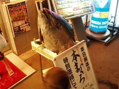 Giant Tuna Head