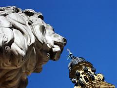snack? (malona) Tags: blue sculpture tower up munich mnchen lion skulptur bluesky snack turm 2007 lwe theatinerkirche kirchturm 070502 malona mnchnerstreifzge setbluesky