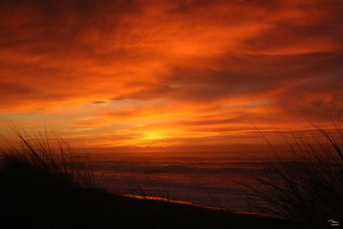 Kekerengu dawn