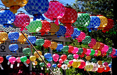 Spring Celebration (dyobalexander) Tags: blue red phoenix beautiful yellow colorful purple superb vivid round lanterns oriental nomads masterpiece backlighting briliant colorphotoaward superbmasterpiece beyondexcellence 1on1colorfulphotooftheday 1on1colorfulphotoofthedaymay2007 phoenixnomads