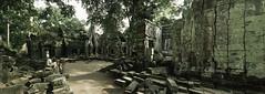 Angkor - Ta Prohm III - by zerega