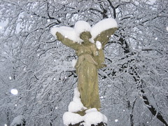 cold angel (oliworx) Tags: schnee winter 15fav snow cold cemetery graveyard angel munich mnchen cool 2006 kalt topv100 topv300 ostfriedhof 200603 ccby oliworx