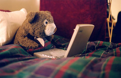 Late night (selva) Tags: teddybear bear stuffedanimal laptop flannel duvet maurice soft fuzzy toy pillow bed computer cute nikonf2 50mm film 35mm