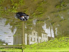 The House (erix!) Tags: house reflection green fence puddle cap ef schwerte kreisunna