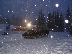 Sleigh Rides (Steve Rosset) Tags: winter white mountain snow canada cold night silver geotagged star evening bc ride britishcolumbia columbia tagged british snowing flakes sleigh geo steverosset steverossetphotography