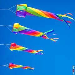 Dragon Kite Flying Formation (BigRedTroll) Tags: blue breeze bright celebrate celebration clean color colored colorful coloured colourful dragon festival flag fly flying formation free freedom kite sky vivid wind