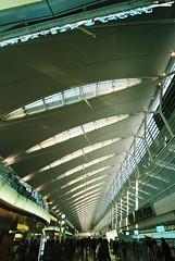 天井翼 画像19