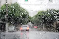 No trnsito, na chuva. (Henrico Dohara) Tags: chuva belm
