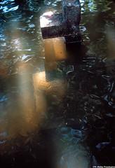 uwcross (Zzzzt!Zzzzt!) Tags: floodedcemetery cemetery graves graveyard cross austin flooded flood kodchrome