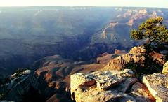 (FriendlyStranger) Tags: landscape grandcanyon olympusc4040z