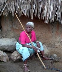 Old Woman in a pink shirt (Kalleda1) Tags: portrait india walkingstick oldwoman rdf andhra pradesh andhrapradesh warangal kalledaphotoproject adivasi