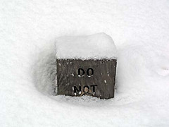 What? What?? (farleyj) Tags: sign snow mystery buried humor closeup woodsign unreadable message surreal what