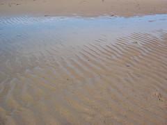 Alnmouth VI (k1rsty) Tags: alnmouth beach