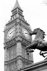 Statue of Boudicca in front of Big Ben (Bruno Girin) Tags: unitedkingdom uk greatbritain england london greyscale bigben ststephen tower boudicca statue horse geolat515 geolong01166667